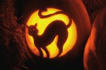 Cat Carved in Jack-O'-Lantern