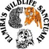 Elmira&#039;s Wildlife Sanctuary