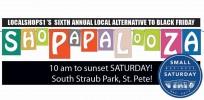 Shopapalooza 2015 and Small Business Saturday