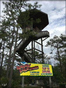 image of ziplining tower